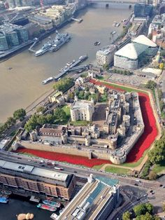 A sea of red ceramic poppies fill the moat of the Tower of London to commemorate the fallen of WWI ahead of the 100th anniversary