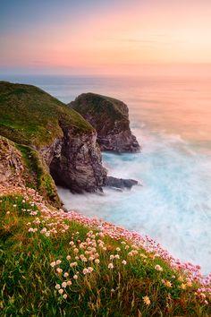 Springtime flowers line de hilltop along de Cornwall coastline near Padstow in England