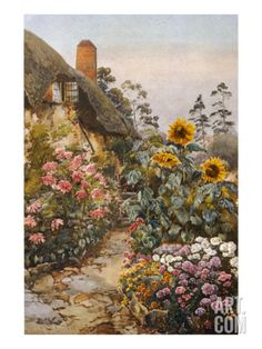 An poster sized print, approx mm) (other products available) - Anne Hathaway& Cottage and garden. Packed herbaceous borders lead up to the cottage - Image supplied by Mary Evans Prints Online - poster sized print mm) made in the UK Cottage Canvas Art, Cottage Art, Cottage Image, Cottage Gardens, Framed Artwork, Framed Prints, Canvas Prints, Anne Hathaway's Cottage, Herbaceous Border