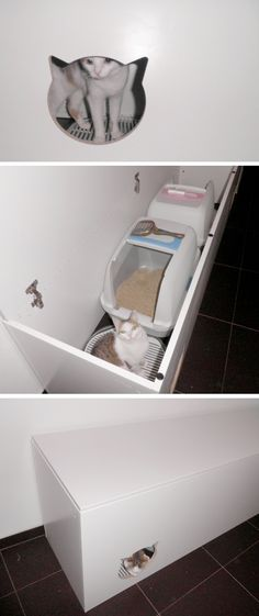 DIY Cat Litterbox - trunk storage