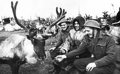 British pilots look at deer relay that brought ammunition to the airfield. Photo by Evgeny Haldey.