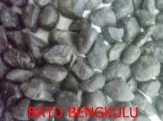 Batu Bengkulu