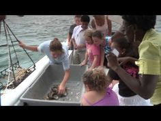 Waterman Heritage Tours - Site