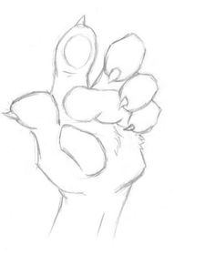 28 Ideas For Drawing Ideas Animals Hand Reference Cute Animal Drawings, Animal Sketches, Drawing Sketches, Art Drawings, Drawing Ideas, Drawing Tips, Art Reference Poses, Hand Reference, Drawing Reference