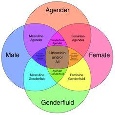 Gender is a spectrum