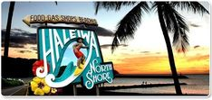 The Surf Bus - Hawaii's North Shore Activities Tour - Family Fun!