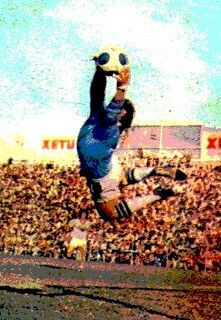 Solo Soccer, Football Mexicano, Goalkeeper, World, Painting, People, Blue, Blue Bloods, Mexico