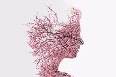 Um die Gehirnfunktion und das Gedächtnis zu verbessern und die neurale Regeneration zu stimulieren, müsst ihr das Gehirn mit geeigneter Kost, Lebensmitteln und Kräutern versorgen Euer Gehirn dient als das eigentliche Kontrollzentrum eures Körpers. Es ist der ursprüngliche tragbare Computer: es wiegt nur ungefähr 1300 Gramm (ein kleiner Prozentsatz eures Gesamt-Körpergewichts), es enthält etwa 160.000