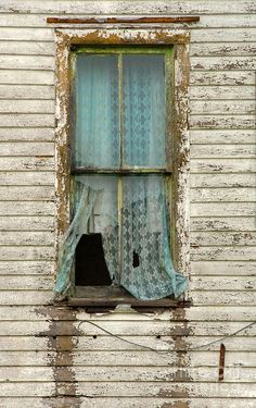 Broken window in an old abandoned house. Old Buildings, Abandoned Buildings, Abandoned Places, Old Windows, Windows And Doors, Exterior Windows, Broken Window, Ivy House, Through The Window