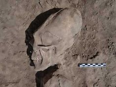Long bones of the skull was unearthed in Mexico profusely