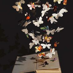 Creative Paper Craft Ideas, Amazing Paper Art by Su Blackwell