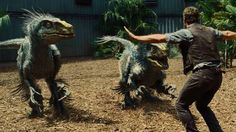 """The feathered squad.   People Have Turned The Raptor Squad From """"Jurassic World"""" Into A Ridiculous Meme"""