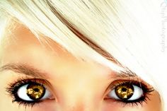 Her wolfy eyes stared out at me from between the leaves, platinum hair shining. Then she was gone.