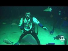 """Sports Illustrated names :Ray Lewis Dance Under Water at National Aquarium"""" video their MUST SEE VIDEO of the week! Thanks SI!"""