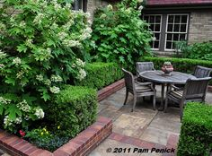 """Boxwood and Oak Leaf Hydrangea """"Digging » Dallas Open Days Tour 2011: Rister-Armstrong garden"""""""
