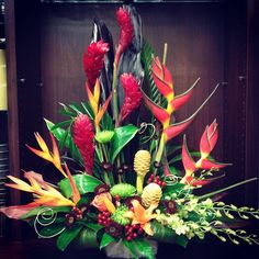 Look at this!!! #tropicals are so #fun and #showy!
