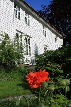 """FINN – NY PRIS! LEIKVIN. Den gamle """" Sorenskrivargarden"""". Herskapelig og antikvarisk."""