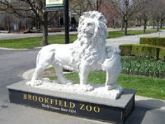 Headed to Chicago?  Don't miss the Brookfield Zoo.  Couponsforthezoo.com has a great deal on discounted admission.