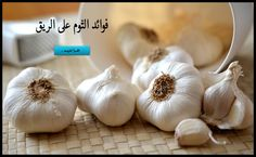 What are the benefits of garlic , Garlic is used all over the world in cooking, however it's also been used as a medicine throughout ancient and fashionable history, it has been taken to prevent and treat many conditions and diseases. Raw Garlic, Garlic Oil, Aioli, Healthy Habits, Healthy Life, Drinking Lemon Juice, Garlic Benefits, Low Calorie Snacks, Gaps Diet