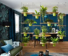 Interior Garden, Interior Plants, Diy Room Divider, Divider Ideas, Pallet Room, Plants For Raised Beds, Magic Garden, Decoration Plante, Olive Garden