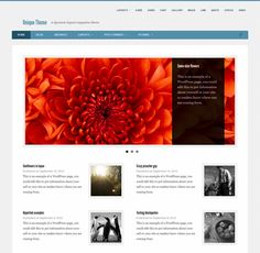 This free responsive magazine WordPress theme has a clean design, custom page templates, featured images, support for 9 post formats, Flexslider, threaded comments, sticky posts, and more.