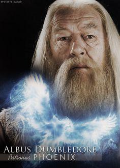 Albus Dumbledore| Patronus: Phoenix