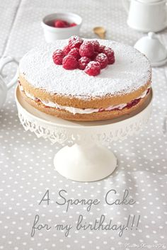 Madame Xícaras: Sponge Cake