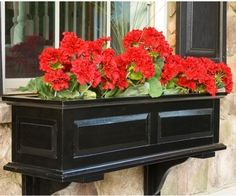 Would look great on the front porch with the black door!