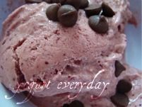 These frozen yogurt recipes are full of protein, calcium, and healthful lactobacillus bacteria.   This is a great way to replace ice cream, each serving of frozen yogurt contains only half the calories present in an equal portion of ice cream.
