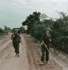 An Army engineer company sweeps for mines along Road 535, 1967.