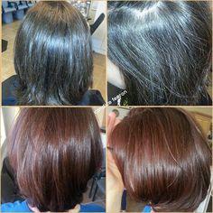 Beyaz kapatma! Organic Colour Systems, Hair Styles, Beauty, Color, Hair Plait Styles, Hair Makeup, Colour, Hairdos, Haircut Styles
