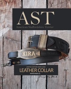 Leather collar AST American Staffordshire, Leather Dog Collars, Terrier, Accessories, Terriers