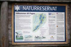 Naturreservat Fegen See Nature