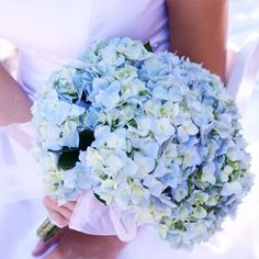 soft blue hydrangeas that have some white in them could be beautiful too