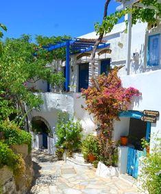 Traditional vibes on 📍Tinos island (Τήνος) Cyclades Islands, Crete Island, Mykonos, Santorini, Paros, Eastern Countries, Greek House, Small Island, Photos Du