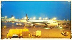 Alitalia A330 at Toronto Pearson Airport