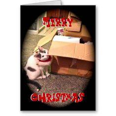Momo Merry Christmas Card #greetingcard #greetingcards #card #cards #greetingcardtemplate #cardtemplate #personalizedgreetingcard #personalizedgreetingcards #merrychristmas #merrychristmascard #merrychristmasgreetingcard #holidaycard #cat #catchristmascard #funnychristmascard