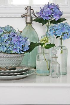 Så var det den blå hortensia sin tur idag,eller blå/lilla vil jeg kansje si. Når hortensian begynner å bli vissen,pleier jeg å klippe av d...