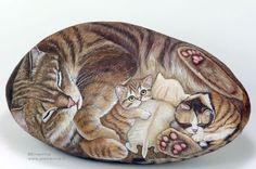Cats stones
