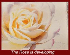 Watercolor Painting DVD How to paint a white rose in by dorisjoa