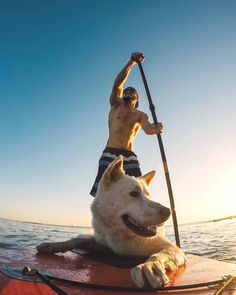 Take your dog to paddle out. sup board up paddle Repost: Board Stand, Inflatable Paddle Board, Sup Stand Up Paddle, Sup Boards, Sup Surf, Paddle Boarding, Kayaking, Your Dog, Surfing