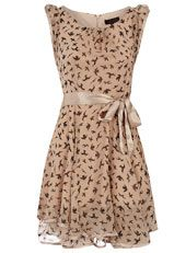 Dorothy Perkins Champagne Swallow dress