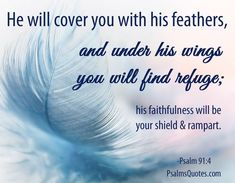 Psalm Faith Bible Verse on inspirational image. Psalms Quotes, Bible Verses Quotes, Encouragement Quotes, Bible Scriptures, Psalm 91 4, Healing Verses, Shadow Of The Almighty, Bible Verses About Faith, Church Quotes