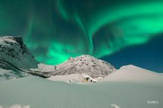 On our Northern Lights Tesla Experience in Tromso, we will take you into the arctic fjords in search of epic landscapes and of course, the northern lights. Northern Lights Tours, Pukka, Tromso, Lofoten, Tour Operator, Plan Your Trip, Us Travel, Trip Planning