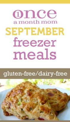 Gluten Free Dairy Free freezer meals for September 2012