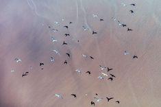 South_Africa_Aerial_Zack_Seckler-5