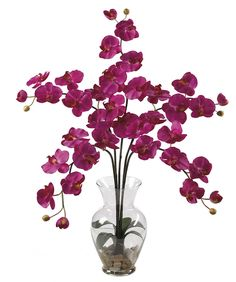 Phalaenopsis Silk Orchid in Water Vase in 8 colors   31 inches
