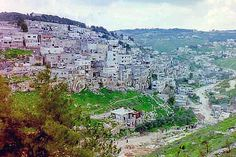 Silwan    From Wikipedia, the free encyclopedia    View of Silwan, or Kfar Shiloah, Hebrew: כפר השילוח; Arabic: سلوان is a mostly Arab neighborhood of roughly 45,000, adjacent to the Old City of Jerusalem, extending along the Kidron Valley and running  http://thejobsfor13yearolds.com/summer-jobs-for-13-year-olds/  http://thejobsfor13yearolds.com/babysitting-jobs-for-13-year-olds/