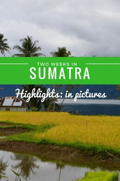 Two weeks in Sumatra: Highlights, in Pictures The island of Sumatra in Indonesia is full of epic adventures: volcano hiking, jungle trekking and orangutan spotting just to name a few. It& well worth a trip - here& why. Travel Advice, Travel Guides, Travel Tips, Travel Plan, Travel Articles, Asia Travel, Japan Travel, Travel With Kids, Family Travel