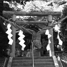守り神? photo by Tsutomu Komine